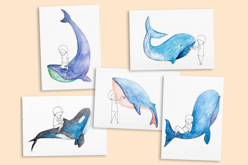 Cartes Baleine
