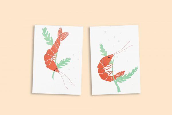 Cartes Crevettes